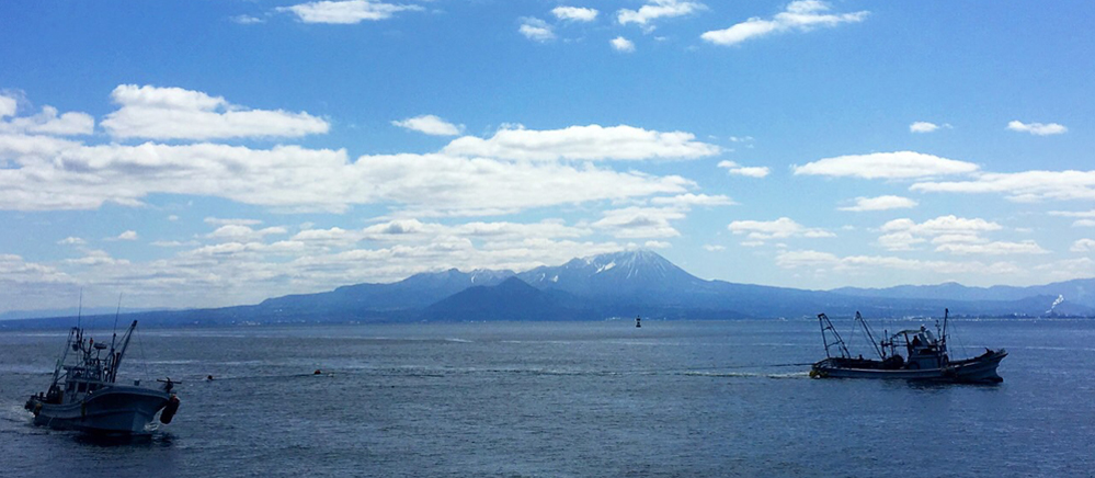 大山を眺めるオーシャンビューイメージ1